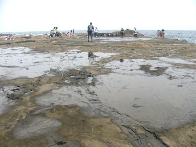 波に削られ平らな岩場