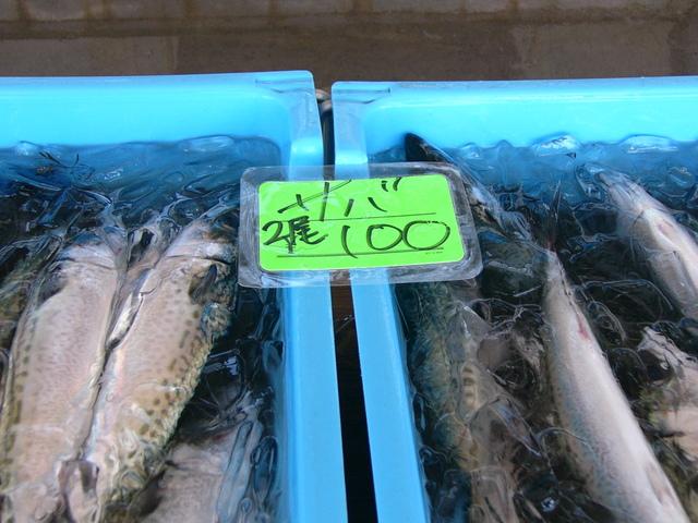 サバ2匹100円